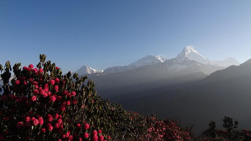 Треккинг в Непале весной 2017