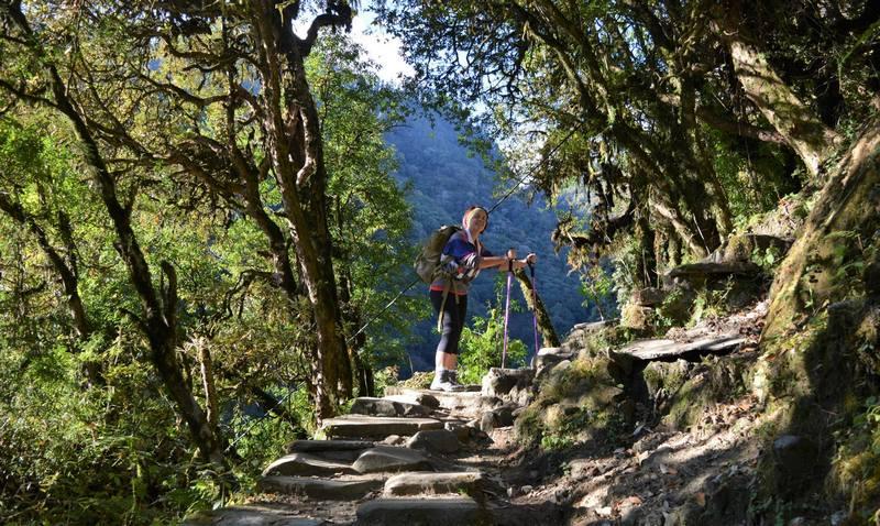 Треккинг в Непале - джунгли