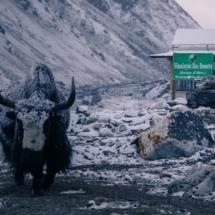 Трек к Эвересту через Гокио апрель-май 2017 - фото 44