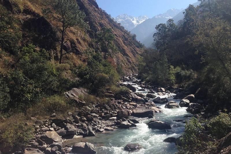 Горная река в Лангтанге