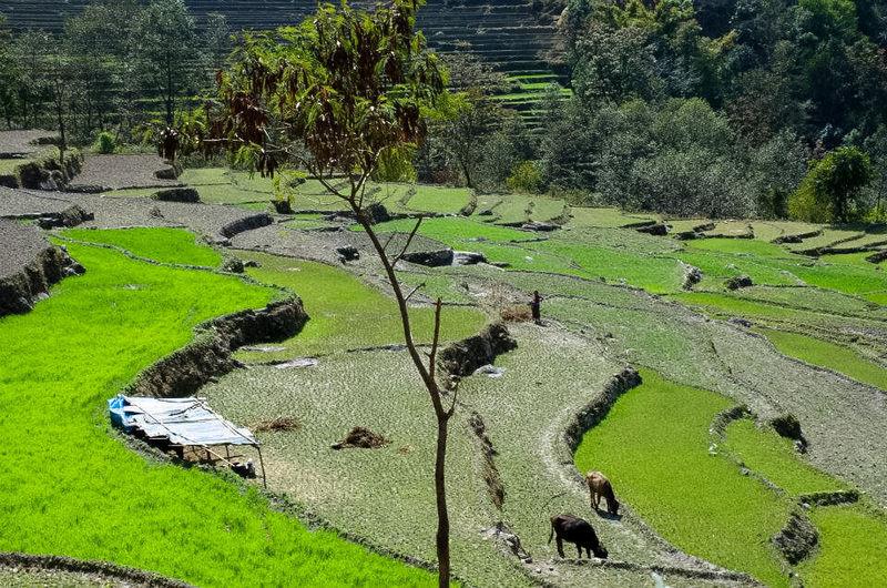 деревня Чамже в Непале