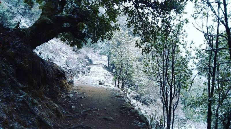 Заснеженная тропа в Гималаях
